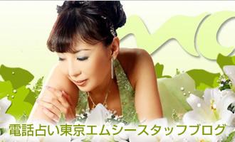 東京エムシースタッフブログ